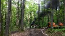 Waldbrandübung_1