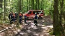 Waldbrandübung_2